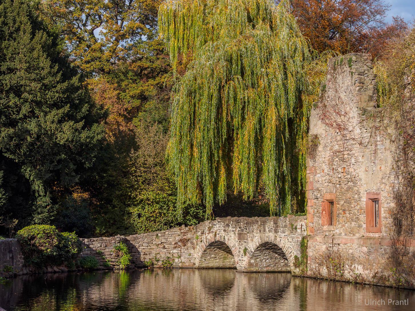 Aschaffenburg, Burgruine, Park Schöntal