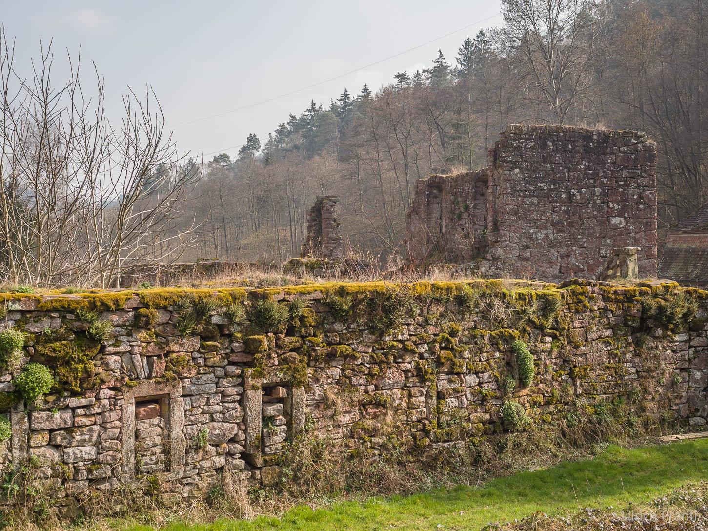 Kartause Grünau, Mauer