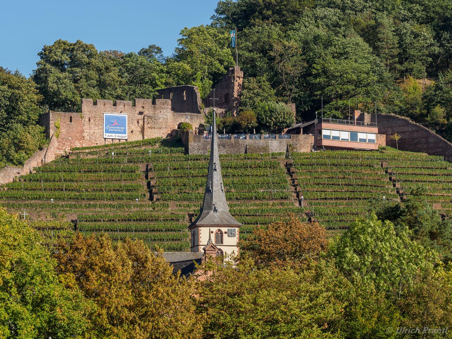 Klingenberg Burg