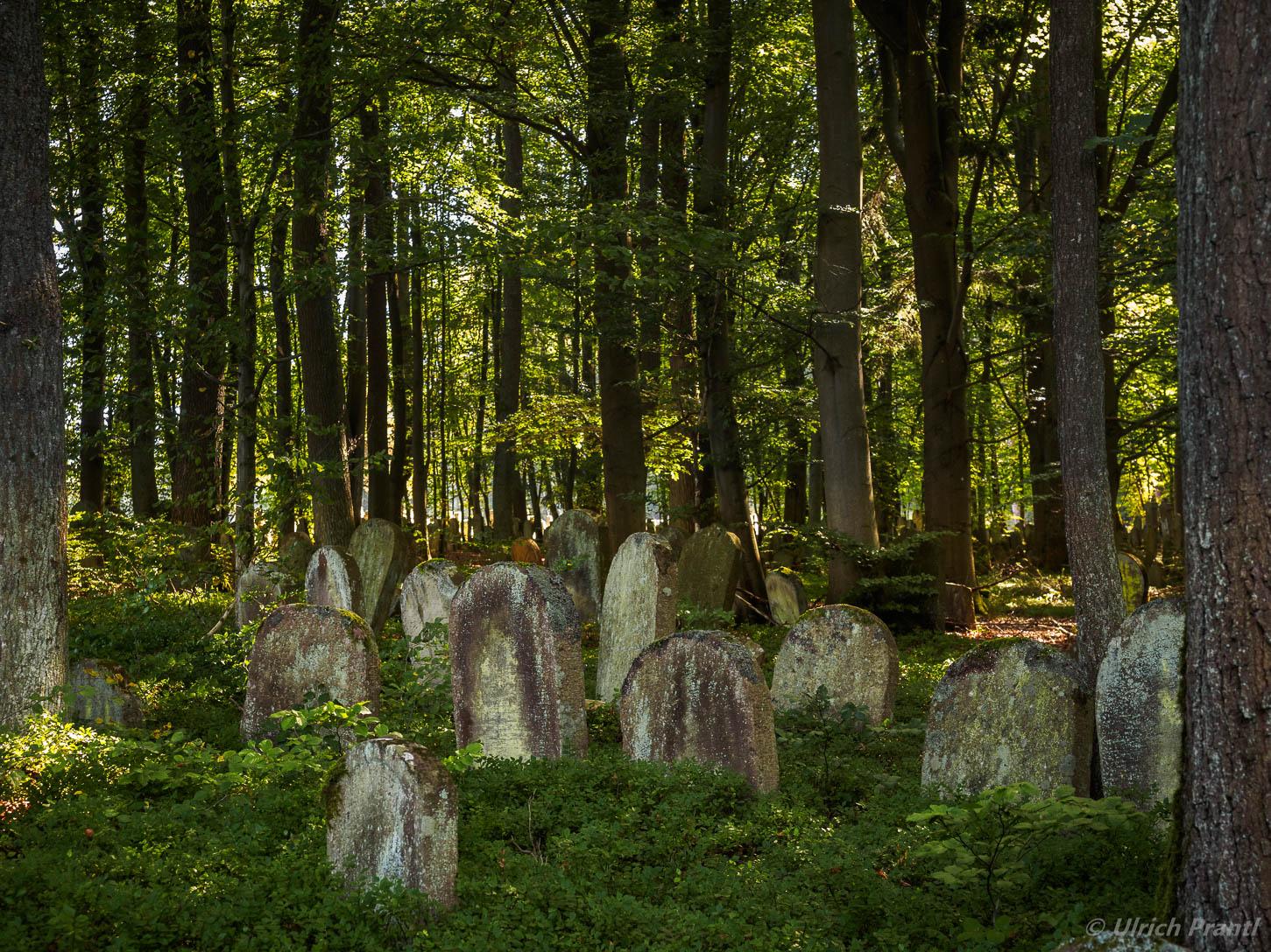 Altengronau, Jüdischer Friedhof