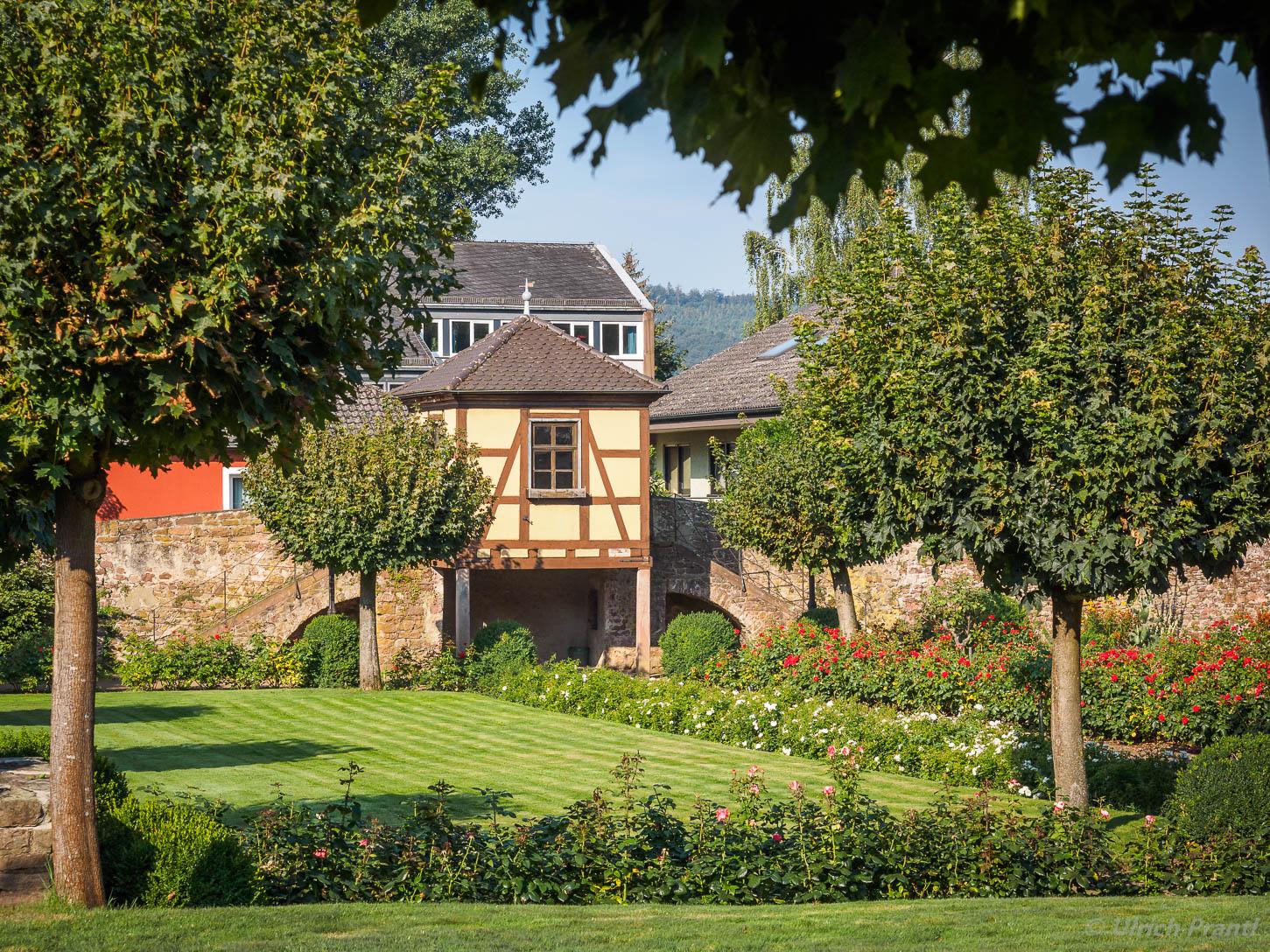 Klingenberg Rosengarten