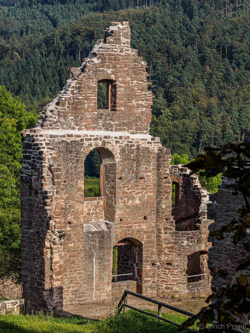 Kollenburg / Burg Collenberg